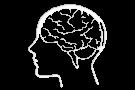 Corso online di Migliora la tua memoria